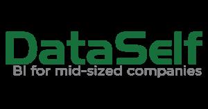 DataSelf Solutions